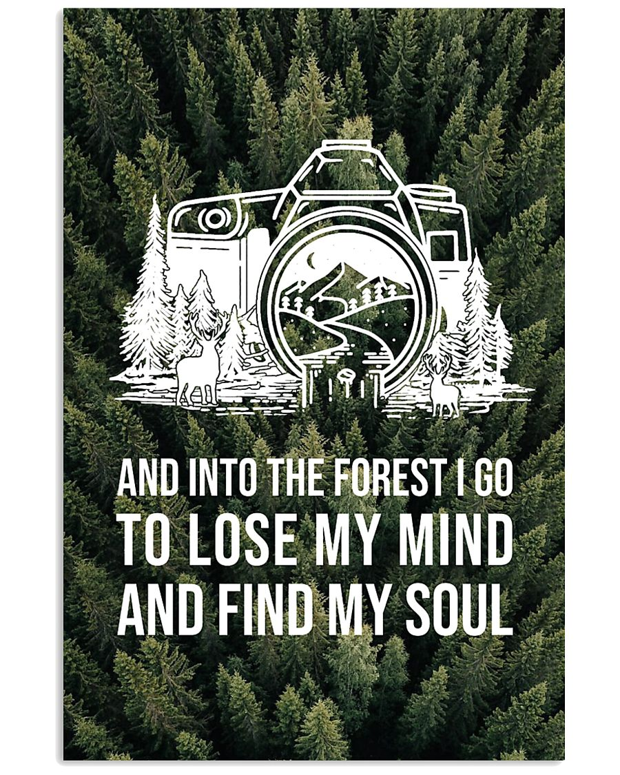 Forest And Into The Forest Photography 16x24 Poster