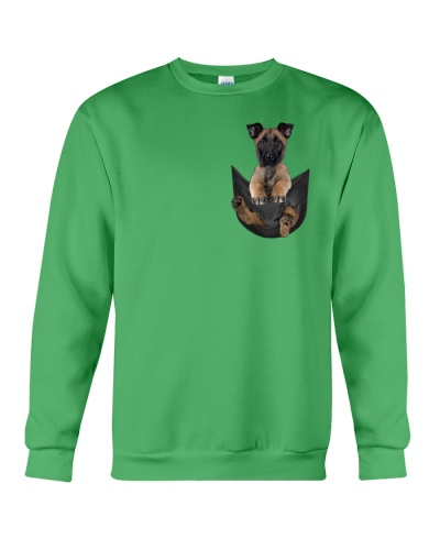 Belgian Malinois in pocket
