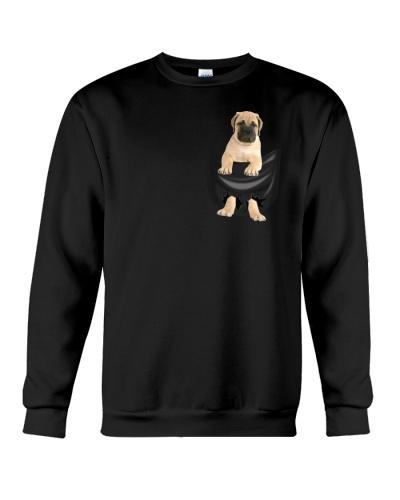 Bullmastiff in Pocket