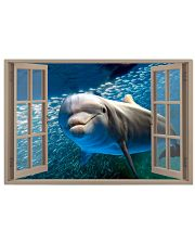 Dolphin Window View 36x24 Poster front