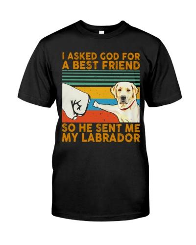 He Sent Me My Labrador