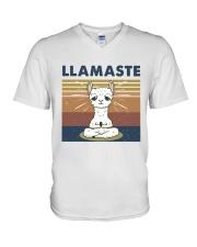 Llamaste V-Neck T-Shirt thumbnail