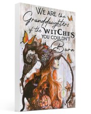 Witches Girl 16x24 Gallery Wrapped Canvas Prints thumbnail