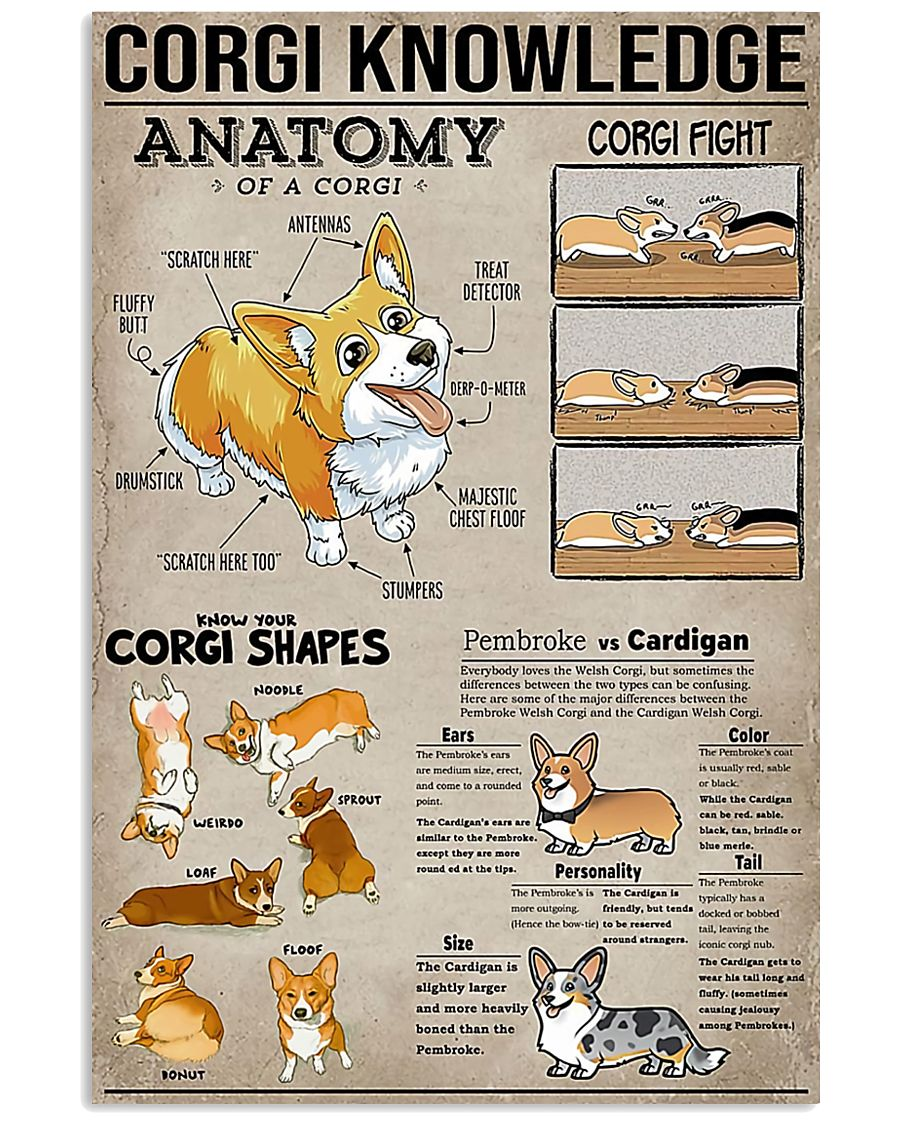 Corgi Knowledge 11x17 Poster