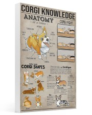Corgi Knowledge 16x24 Gallery Wrapped Canvas Prints thumbnail