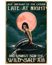 Mermaid At Night 11x17 Poster front