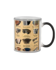 Musical Keyboard Instrument Types Of Accordion Color Changing Mug thumbnail