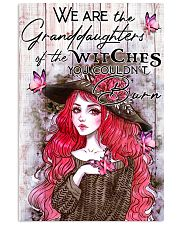 Granddaughter of the witch 3 11x17 Poster front