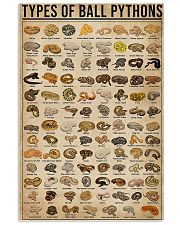 Types Of Ball Pythons 11x17 Poster front