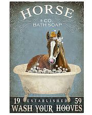 Horse Girl Horse Bath Soap Wash 11x17 Poster front