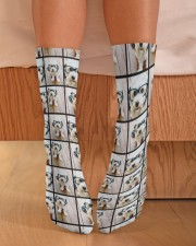 dog Crew Length Socks aos-accessory-crew-length-socks-lifestyle-front-02