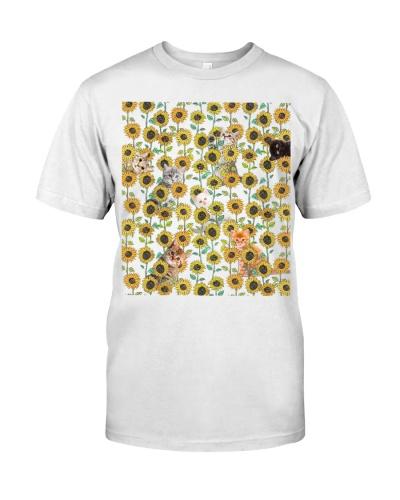 Cats sunflower - AL