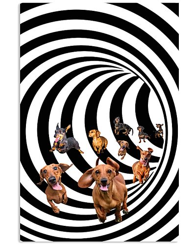Eddy dachshund - HL