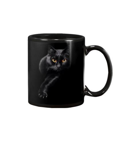 Black cat - HL