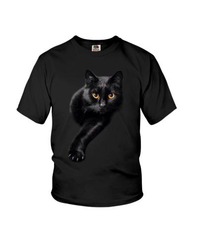 Black cat - AL