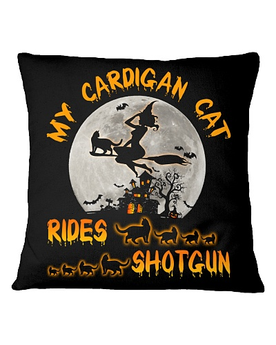 My cardigan cat - HL