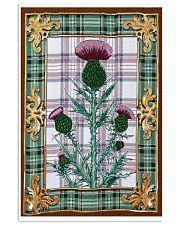 Scottish thistle Vintage reprint 11x17 Poster front