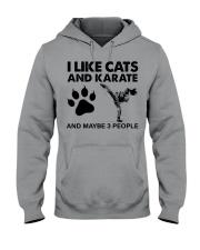 likecats-karate Hooded Sweatshirt tile