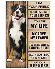 Bernese Poster 24x36 Poster front