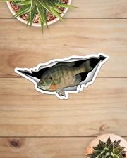 Bluegill Fish Sticker - Single (Horizontal) aos-sticker-single-horizontal-lifestyle-front-07