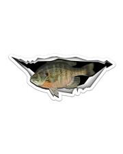 Bluegill Fish Sticker - Single (Horizontal) front
