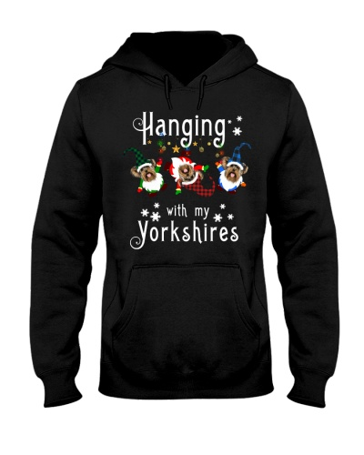 Qhn 3 Hanging With My Yorkshire Terrier Hoodie