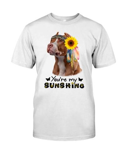 Pitbull You Are My Sunshine