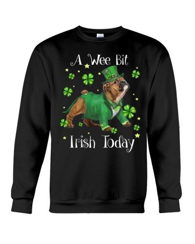 Bulldog wee bit irish today