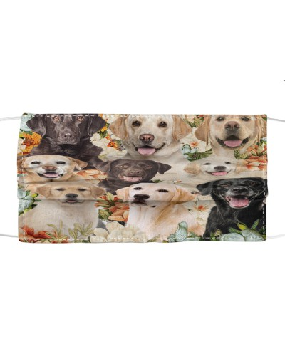 fn 6 labrador retriever flowers face