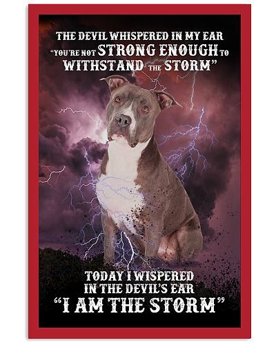 Not withstand beacause iam storm Pitbull
