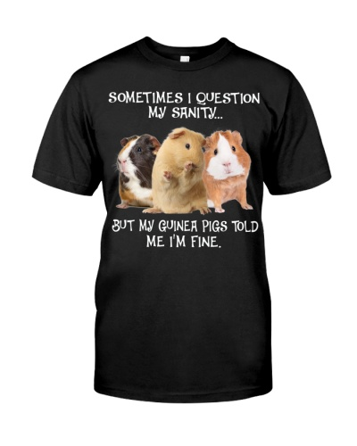 SHN 10 Question my sanity Guinea Pig