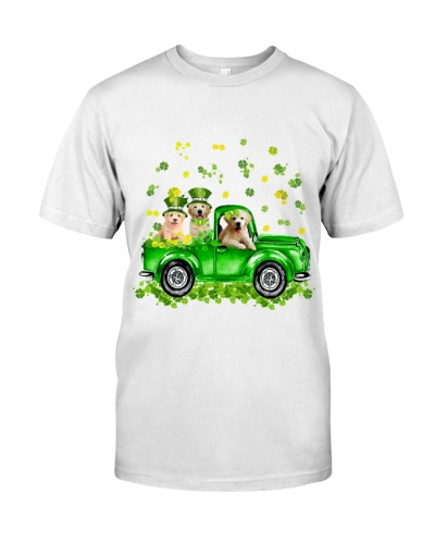 Golden retriever Patrick's day car with lucky hat
