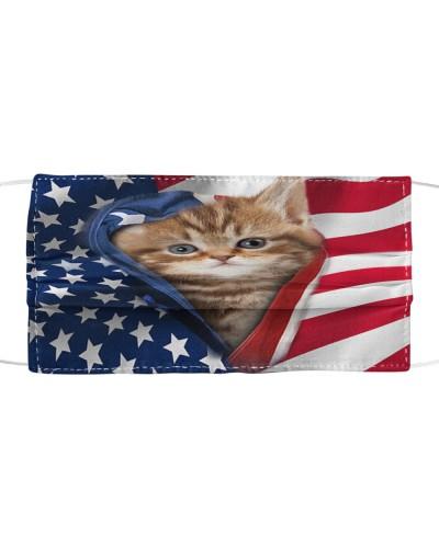 SHN 10 Opened American flag Cat