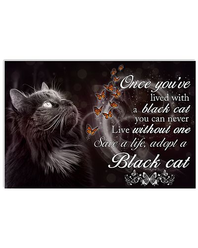 Lived With A Black Cat