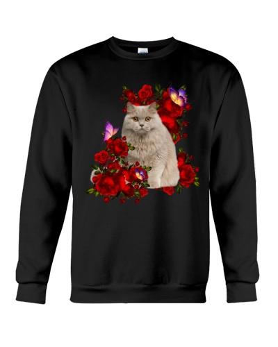 Cat that beautiful can you feel like
