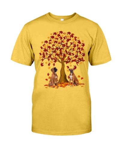 Boxer autumn tree