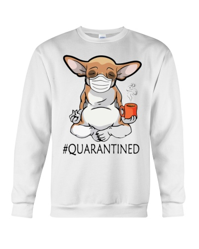 ln chihuahua quarantined yoga
