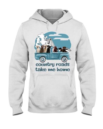 Country Road Labrador