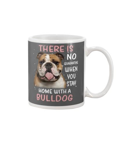 Bulldog no quarantine