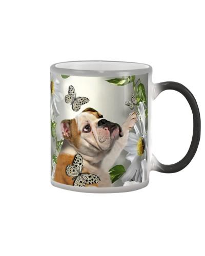 fn 5 bulldog daisy and butterfly face