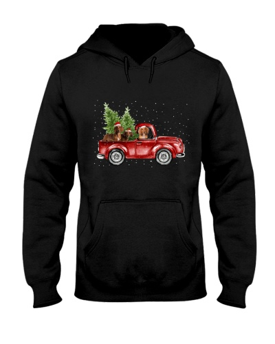 Dachshund christmas car