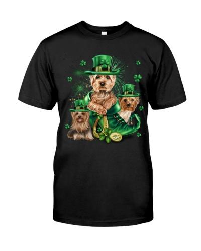 Yorkshire terrier for St Patricks Day