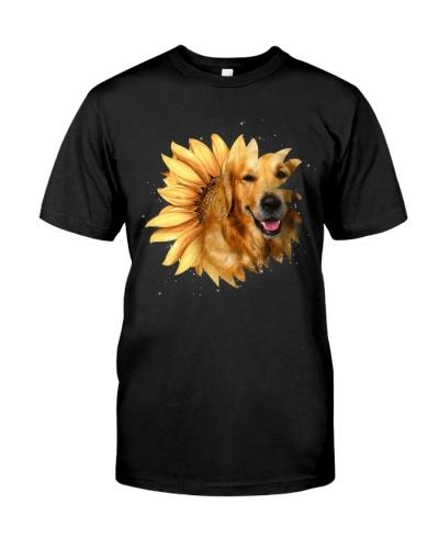 Golden retriever sunflower