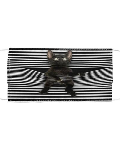 Black Cat Climb Curtain