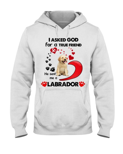 SHN 7 Ask GOD for true friend Labrador Retriever