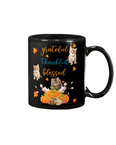 Cat grateful thankful and blessed