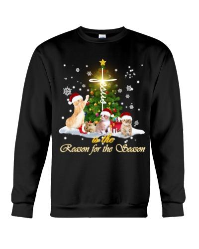 SHN Jesus reason for season Cat shirt
