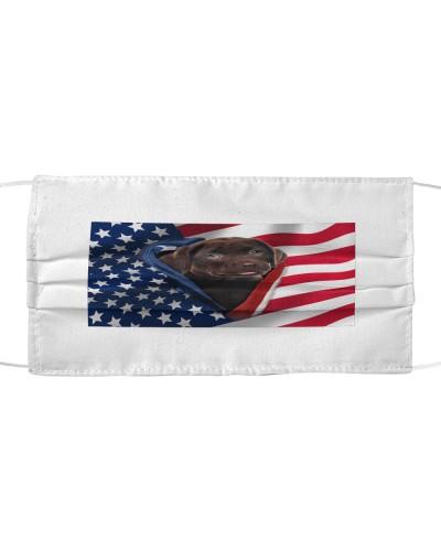 SHN Opened American flag Choco Labrador Retriever