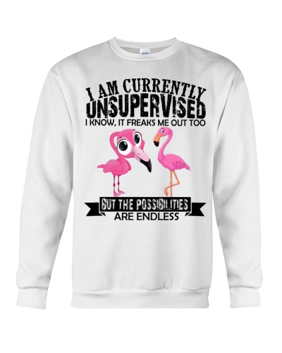 Flamingo unsupervised
