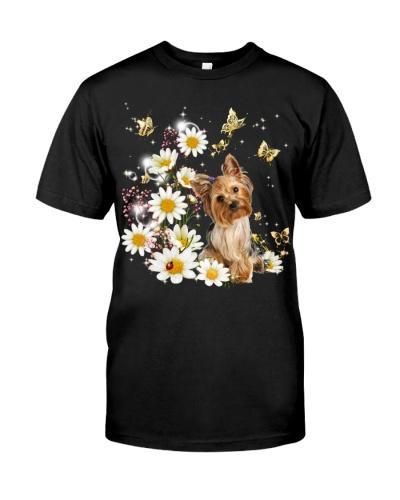 Yorkshire terrier with daisy gypsophila